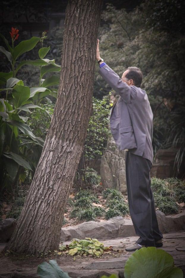 Lu Xun Park morgens um 6: Die beste Attraktion in Shanghai 12