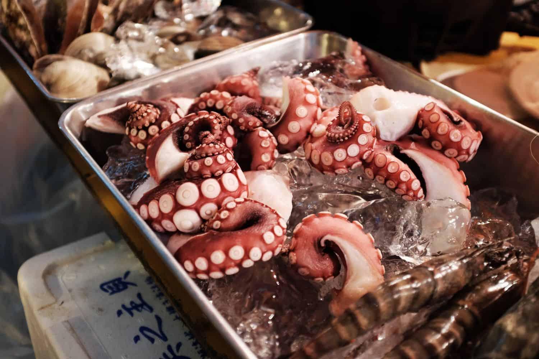 Reiseführer Japan – Fischmarkt in Shinjuku