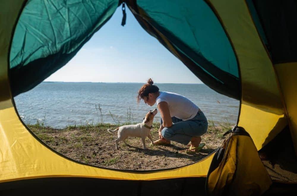 Camping Ostsee Zelten mit Hund im Campingpark Kuehlungsborn
