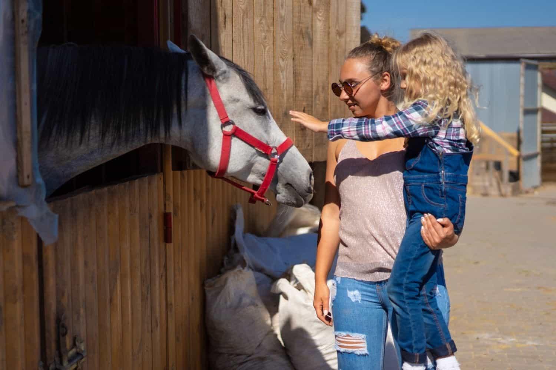 Ferien in Deutschland Bauernhof mit Familie