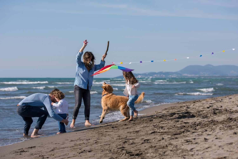 Familie Hund Am Strand