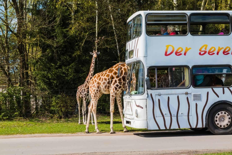 Ferien in Deutschland Serengedi Park