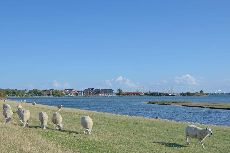 Ostsee Lemkenhafen Fehmarn