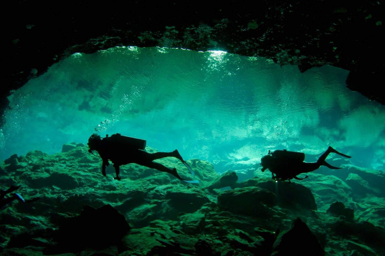 Yucatan Cenoten Tauchen