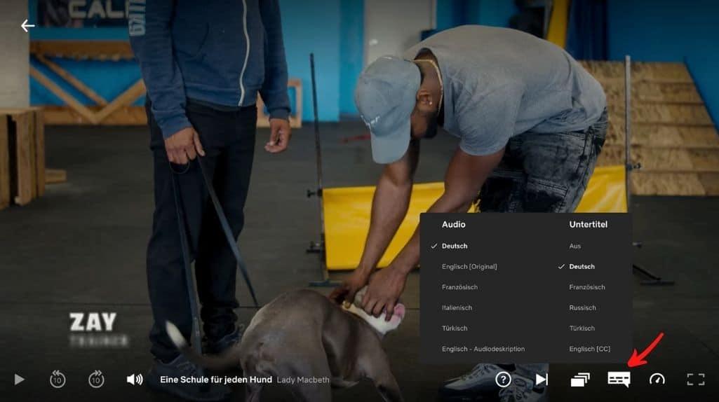 Netflix Region Lock Audio Untertitel Deutsch