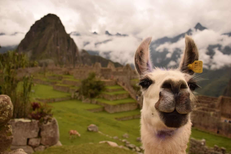 Peru VPN Machu Picchu